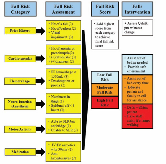 Development of a Tool to Assess Risk for Falls in Women in ...